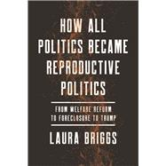 How All Politics Became Reproductive Politics by Briggs, Laura, 9780520281912